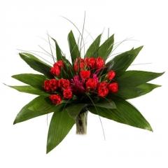 blog-tulip
