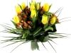 uvod_blog-tulip02
