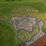 Keukenhof park - van Gogh