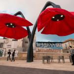sochy červené kvety Jeruzalem