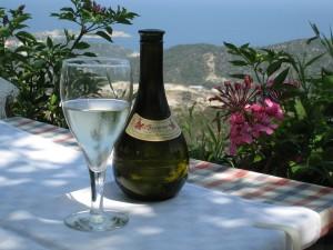 Víno a kvety