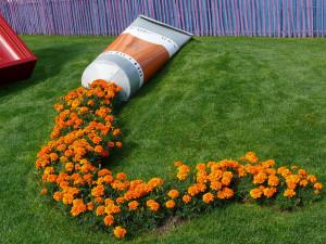 Farebný potok kvetín