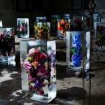 Ľadové kvety