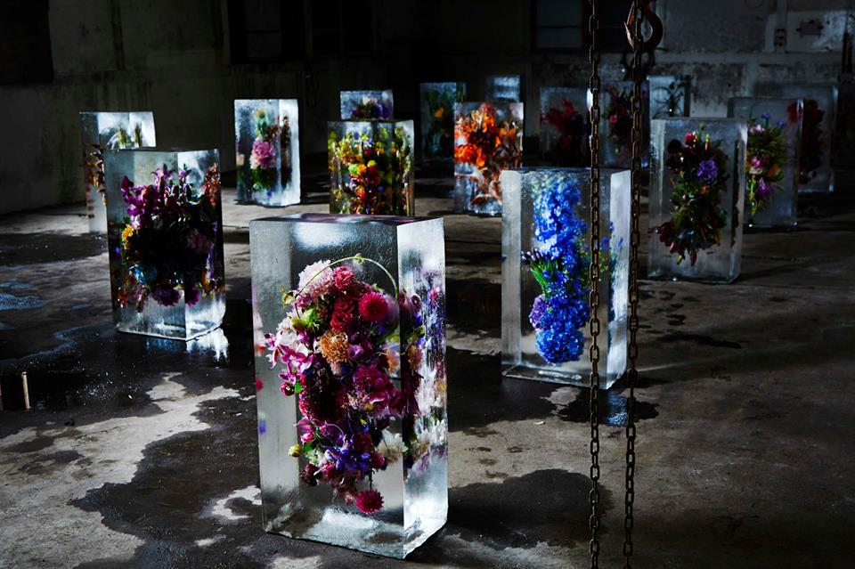 Exotické kytice kvetov v ľadových kockách