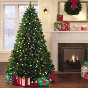 Vianočný stromček živá jedlička