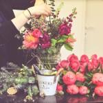 Harrahs kasíno new orleans. Kvetinárstvo stamford lincolnshire.